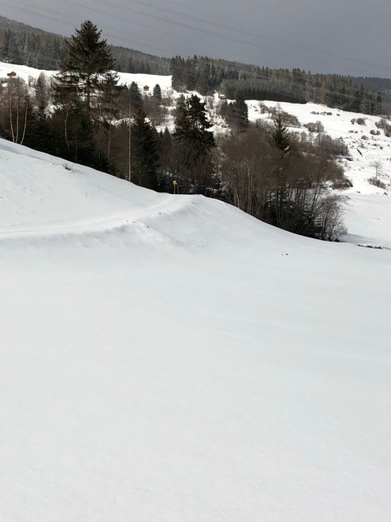 birgit-nora-schaefer-winterspaziergang